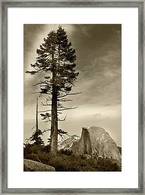 Framed Print featuring the photograph Yosemite National Park  by John Hix