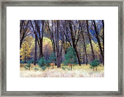 Yosemite Valley Framed Print by Eric Foltz