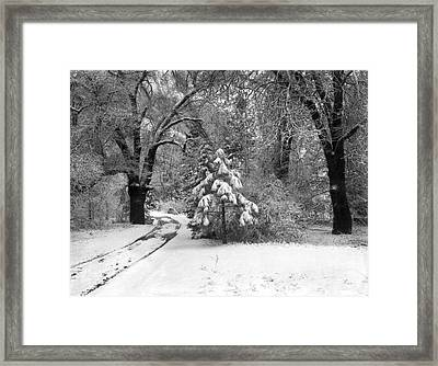 Yosemite Valley Winter Trail Framed Print by Underwood Archives