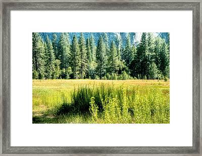 Yosemite Valley2 Framed Print by Michael Cleere