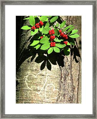 You And Me Framed Print by Deborah Johnson