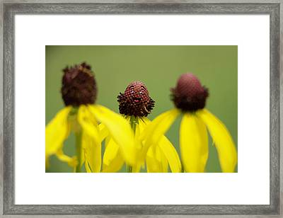 Framed Print featuring the photograph You And Me by Joel Witmeyer