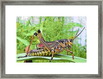 You Bug Me Framed Print by Sheri McLeroy