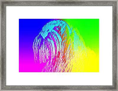 You Can Always Trust Me  Framed Print by Hilde Widerberg
