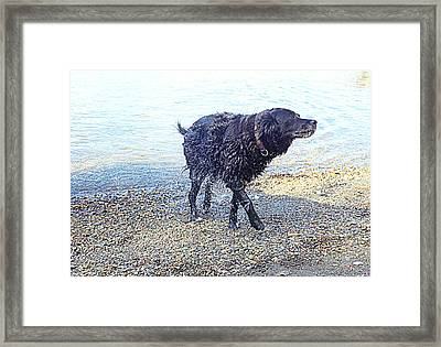You Can Tell That I Just Love Bathing  Framed Print by Hilde Widerberg