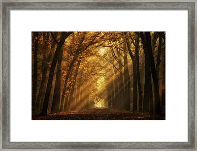 You Can't Have A Light Without A Dark Framed Print by Martin Podt