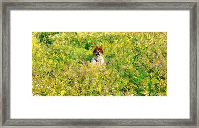 You Found Me - Da Framed Print by Leonardo Digenio