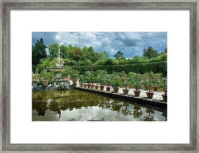 You Have Quite A Garden There Framed Print