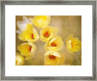 Framed Print featuring the photograph You Light Up My Life by Kathi Mirto