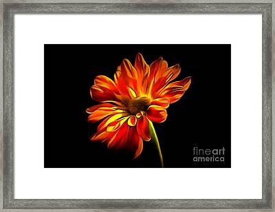 You Light Up My World Framed Print by Krissy Katsimbras