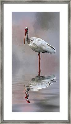 You Lookin' At Me? Framed Print by Cyndy Doty