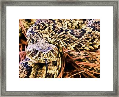You Lookin At Me Framed Print