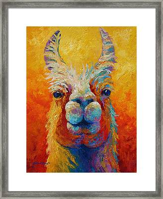 You Lookin At Me Framed Print by Marion Rose