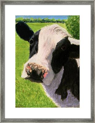 You Looking At Me Cow Painting Framed Print by Joan Swanson