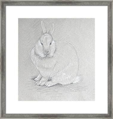You Looking At Me? Framed Print by Deborah Dendler