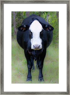 You Look'n At Me? Framed Print