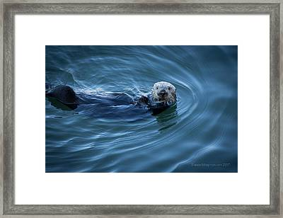 Framed Print featuring the photograph You Otter Take My Picture, Lady by Lora Lee Chapman