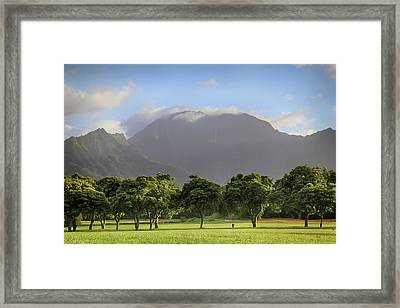 Framed Print featuring the photograph You Still Can Touch My Heart by Laurie Search