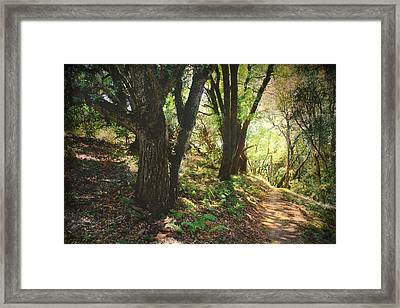 You Tell Me That You Love Me So Framed Print