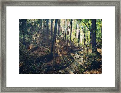 You Used To Tell Me We'd Run Away Together Framed Print by Laurie Search