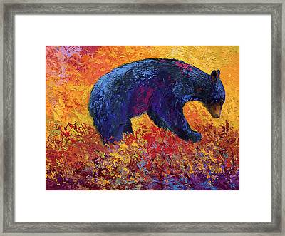 Young Adventuror Framed Print by Marion Rose