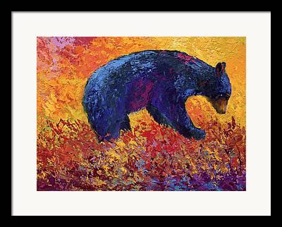 Black Bear Cubs Framed Prints