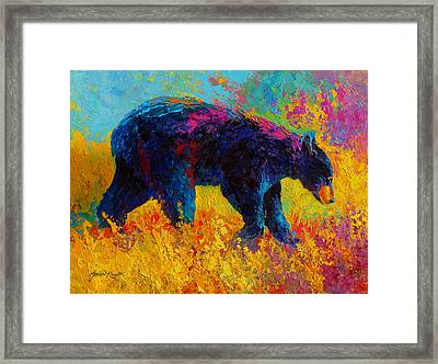 Young And Restless - Black Bear Framed Print by Marion Rose