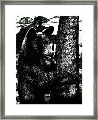 Young Black Bear In Tree  Framed Print
