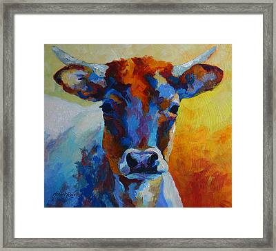 Young Blood - Longhorn Framed Print by Marion Rose