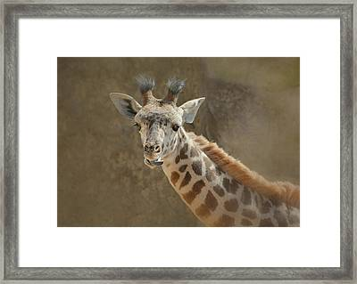 Young Clown Framed Print