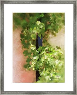 Young Greek Wine Framed Print