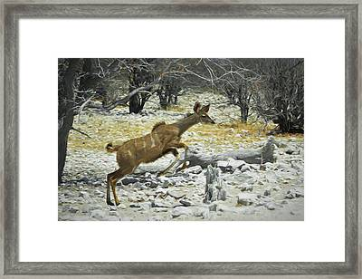 Young Kudu Jump Framed Print by Ernie Echols