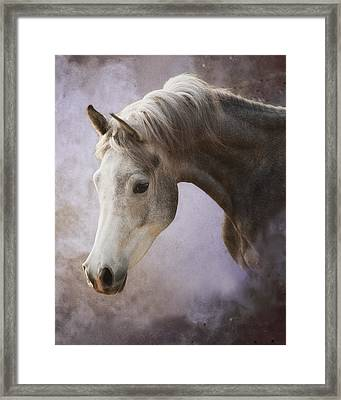 Young Prince Framed Print by Ron  McGinnis
