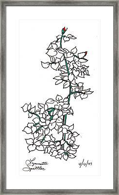 Young Rose Bush Framed Print by Lynnette Jones