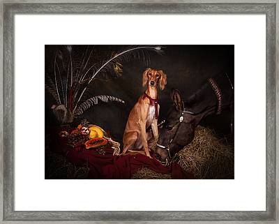 Young Saluki Dog With A Horse Framed Print
