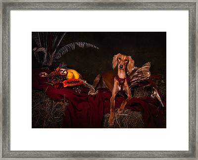 Young Saluki Dog With Fruits Framed Print