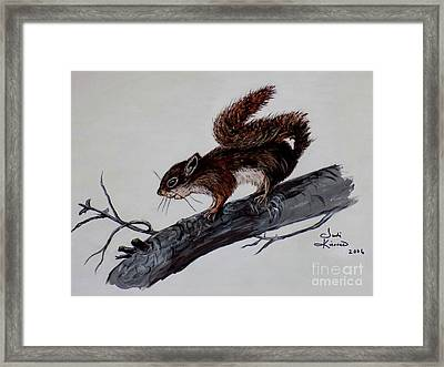 Framed Print featuring the painting Young Squirrel by Judy Kirouac