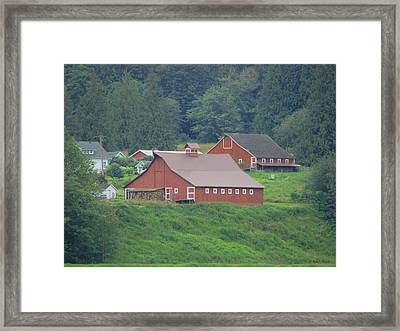 Your Barn Door's Open Framed Print