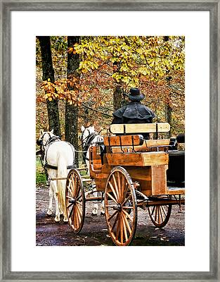 Your Carriage Awaits Framed Print by TnBackroadsPhotos