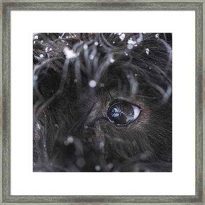Your Eyes Don't Have To Be Open To See Framed Print