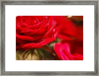 Your Love Spins Me 'round Framed Print by Beverly Stapleton