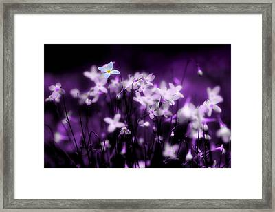 Your Not Alone Framed Print