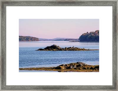 Your View Framed Print