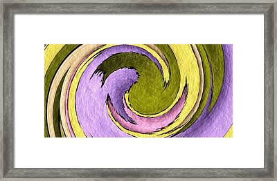 Your Ying To My Yang Framed Print by Terry Mulligan