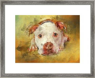 Framed Print featuring the photograph You're My Favorite Human by Bellesouth Studio