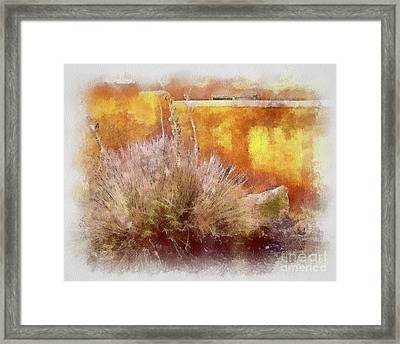 Yucca And Adobe In Aquarelle Framed Print