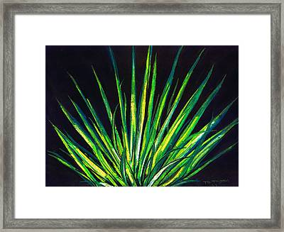 Yucca Framed Print by Melvin Moon