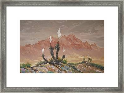 Yuccas In Bloom Framed Print