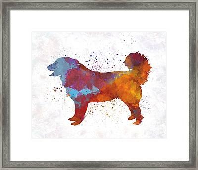 Yugoslavian Shepherd Dog In Watercolor Framed Print by Pablo Romero