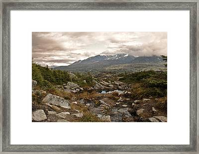 Yukon Framed Print by Michael Peychich